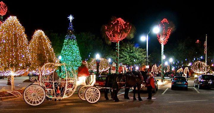 Christmas Tree In Florida